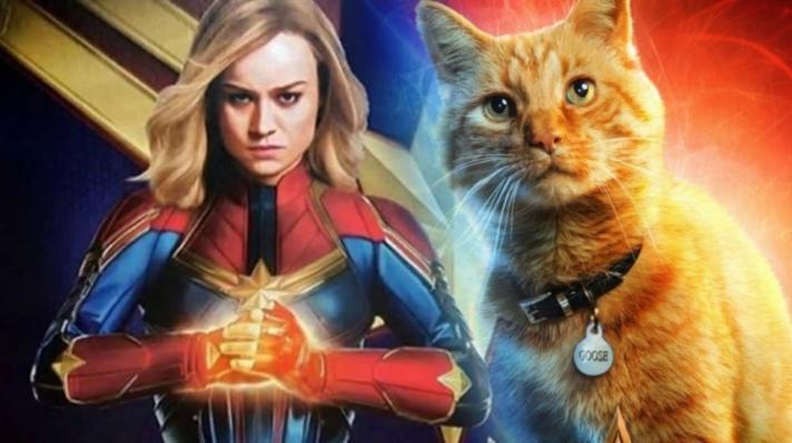 captain-marvel-cat-goose-chewie